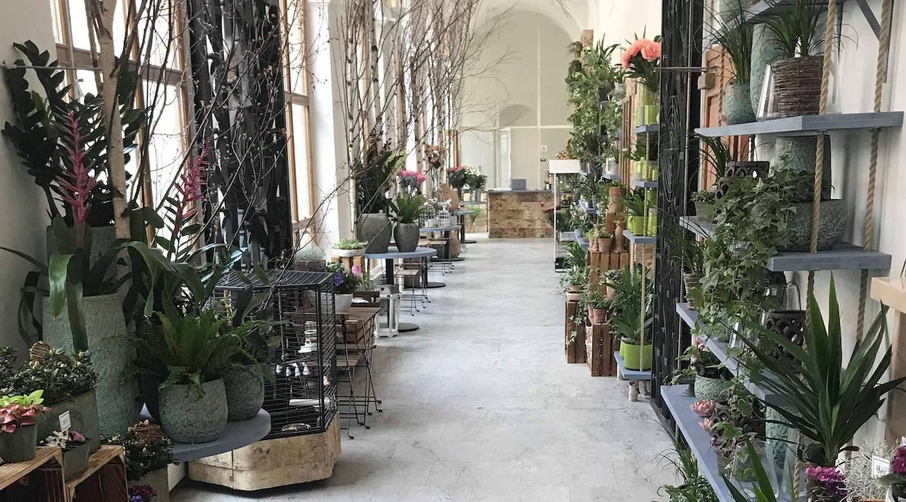Pohled do Květinářství GALERIE od vchodu