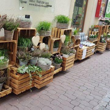 Květinářství GALERIE Brno - předsunutý prodej na rohu ulic Josefská a Orlí