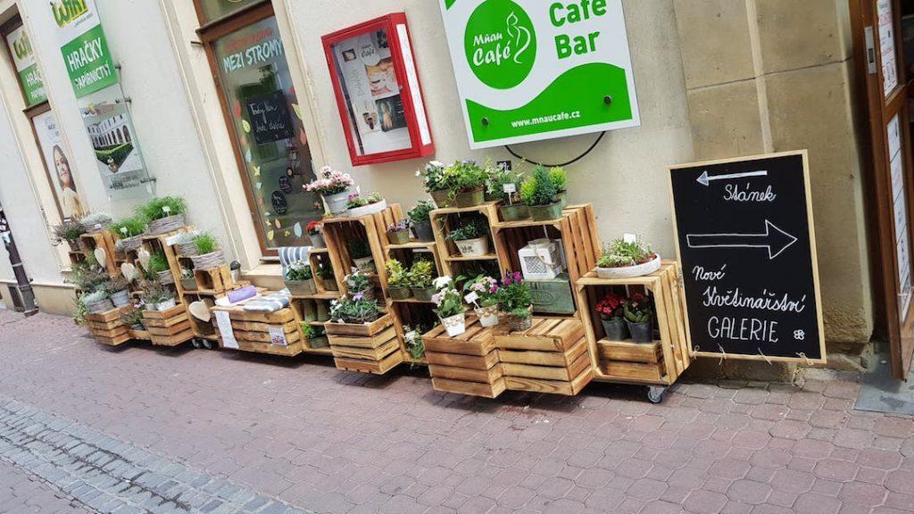 Květinářství Brno střed: náš stánek na rohu Josefské a Orlí