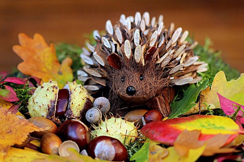 Podzimní výzdoba - Květinářství GALERIE Brno