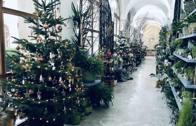 Vánoční výzdoba Květinářství GALERIE Brno