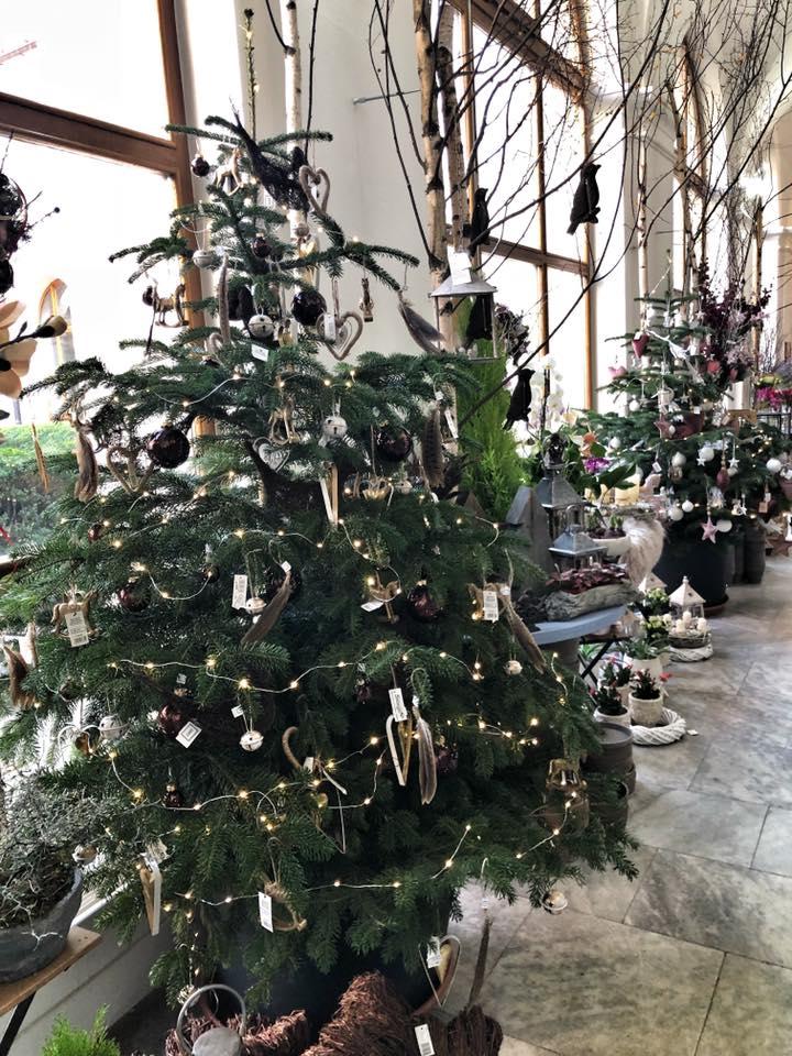 Nazdobené vánoční stromečky 2018 - Květinářství GALERIE Brno