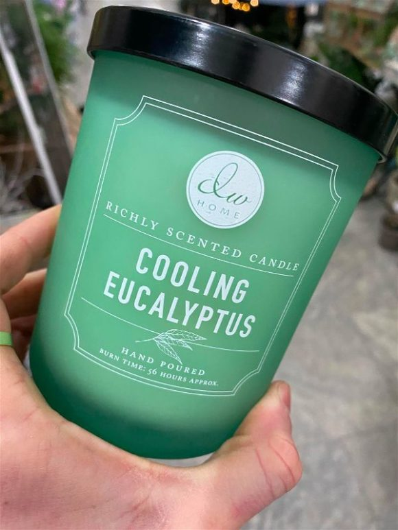 DW Home - Cooling Eucalyptus