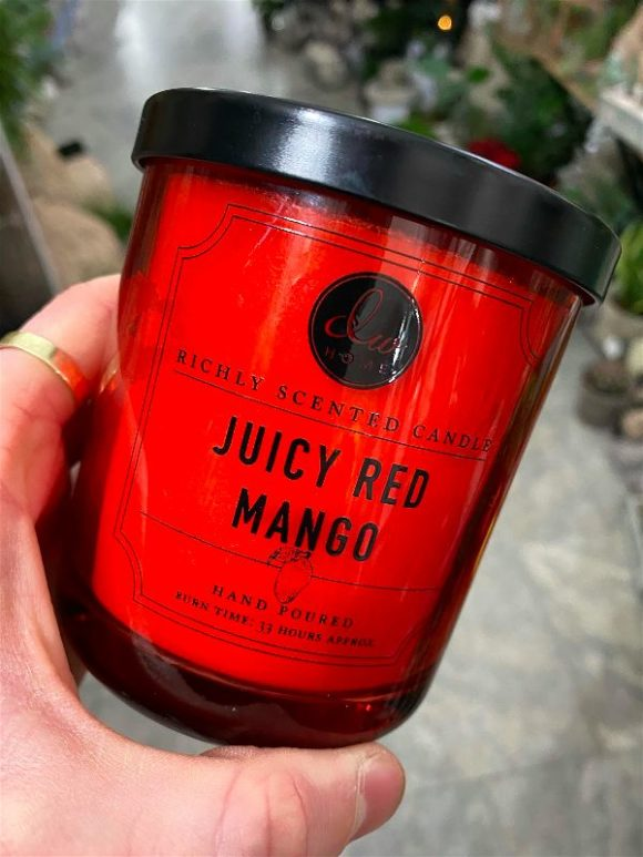 DW Home - Juicy Red Mango